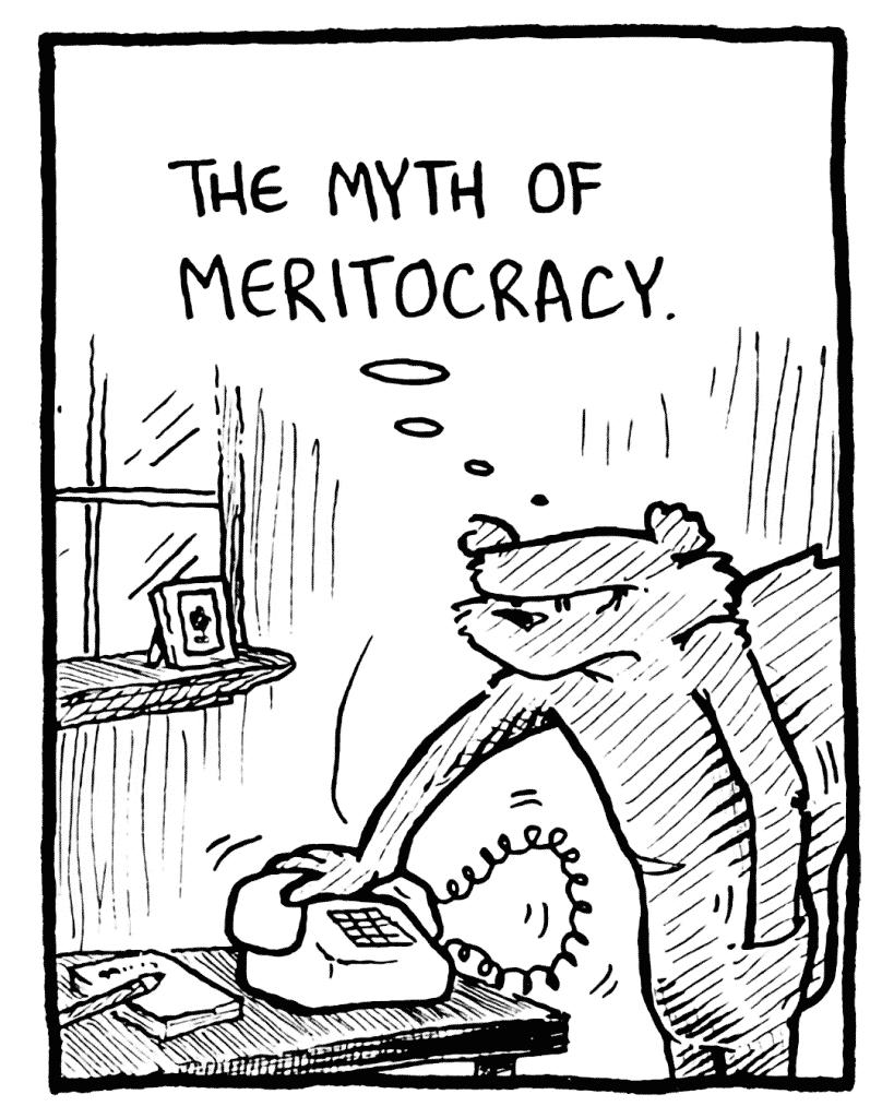 FLYNN: The myth of meritocracy.