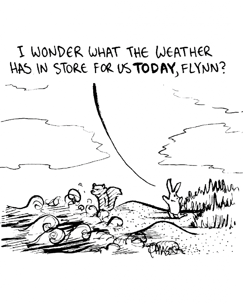 ROONIE: I wonder what the weather has in store for us TODAY, Flynn?