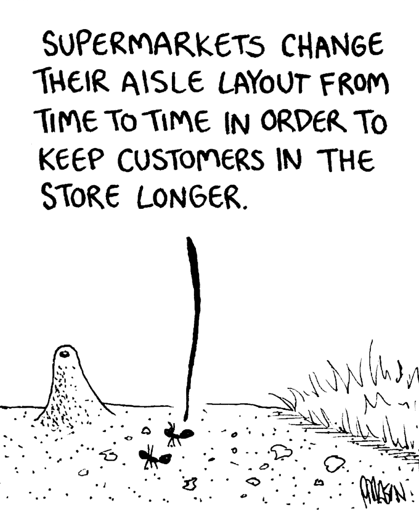 HONEY ANT: Supermarkets change their aisle layout from time to time in order to keep customers in the store longer.