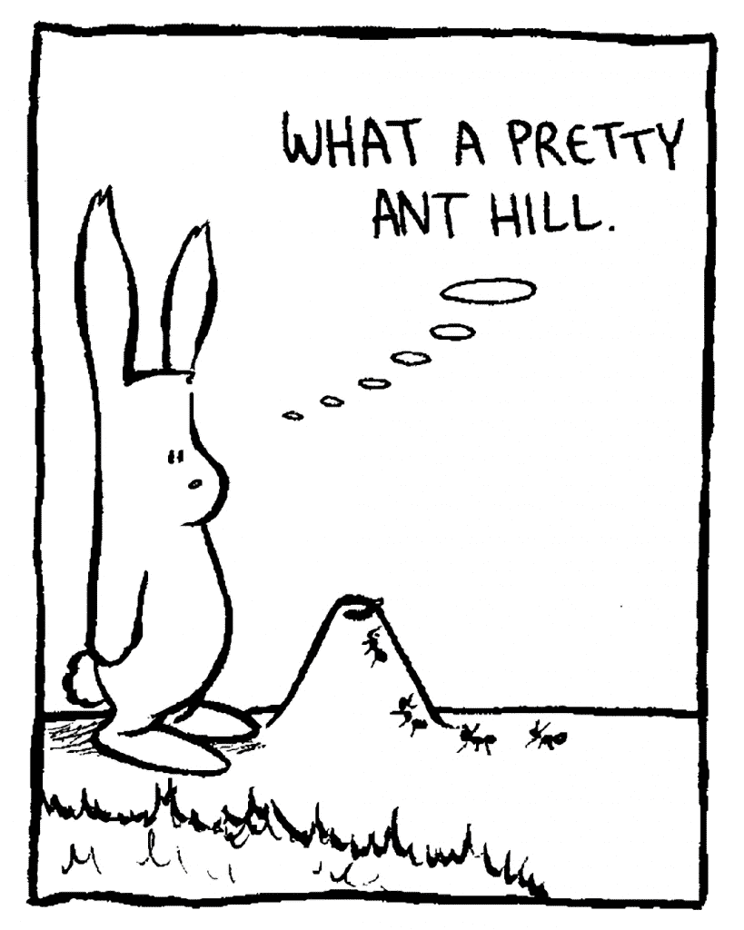 ROONIE: What a pretty ant hill.