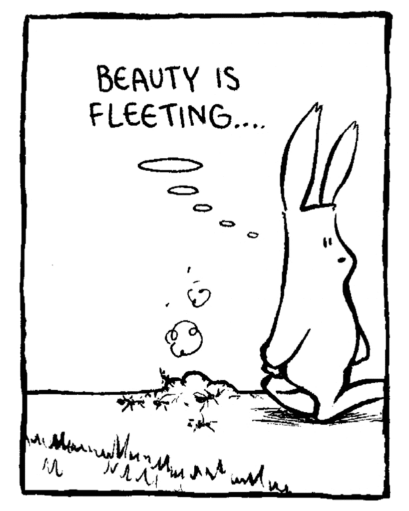 ROONIE: Beauty is fleeting...