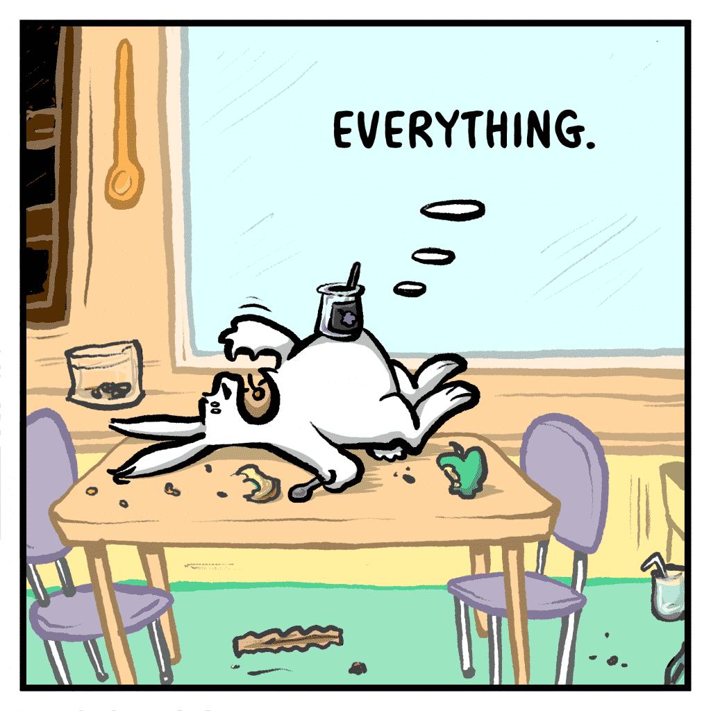 ROONIE: Everything.