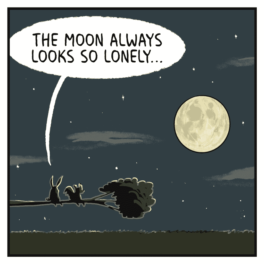 ROONIE: The moon always looks so lonely…